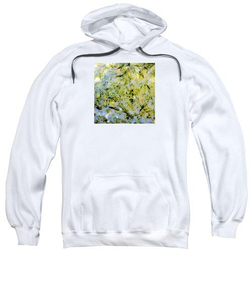 Trees And Leaves Sweatshirt