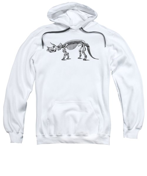 Triceratops Dinosaur Tee Sweatshirt by Edward Fielding
