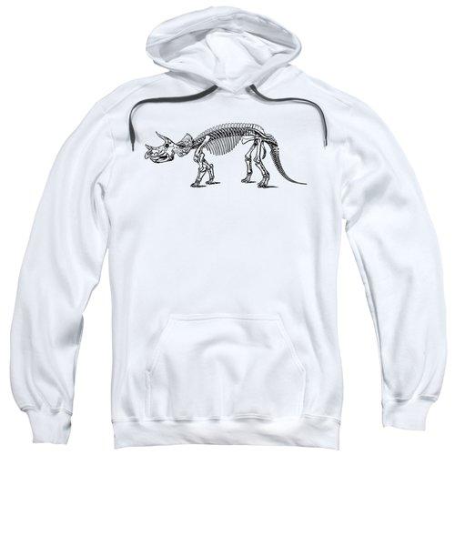 Triceratops Dinosaur Tee Sweatshirt