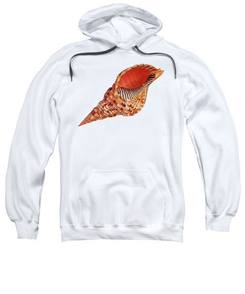 Triton Shell On White Sweatshirt