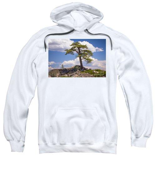 Truckee  Sweatshirt