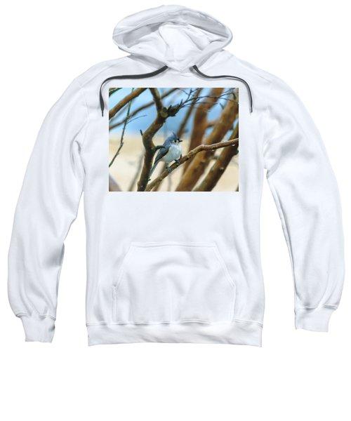 Tufted Titmouse In Tree Sweatshirt
