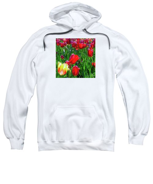 Tulip Garden In Bloom Sweatshirt