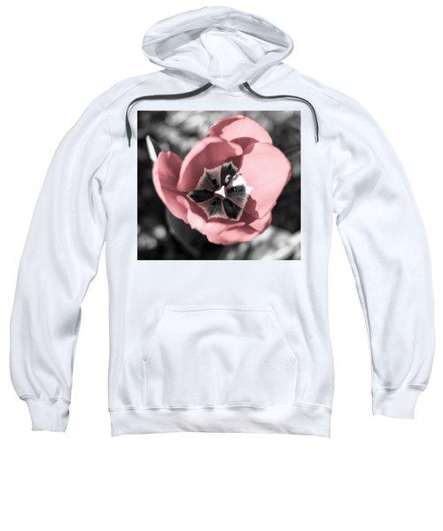Tulip Up Close Sweatshirt