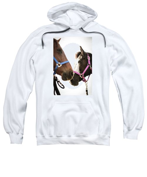 Two Horses Nose To Nose In Color Sweatshirt
