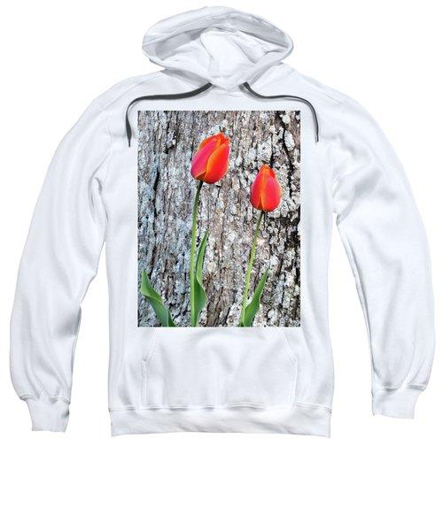 Two Sweatshirt