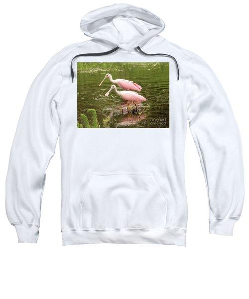Two Spoonbills In Pond Sweatshirt by Carol Groenen