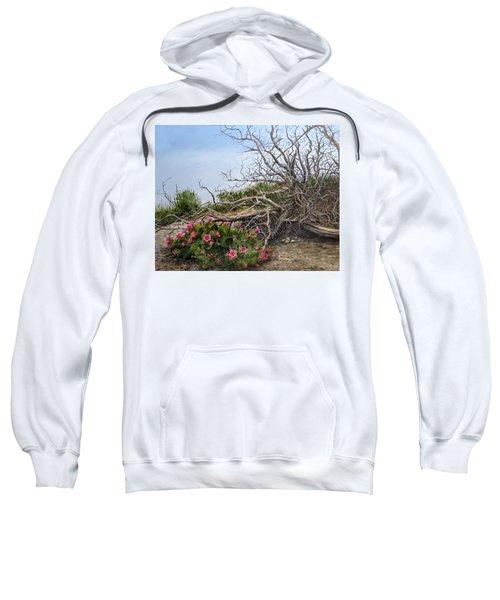 Two Stories Sweatshirt