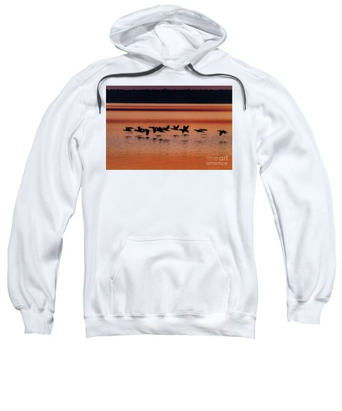 Under The Radar Sweatshirt