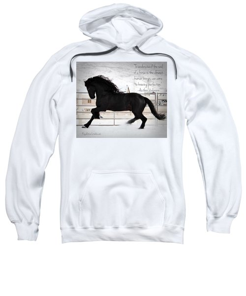 Understand The Soul Of A Horse Sweatshirt