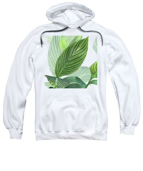 Variegated Sweatshirt