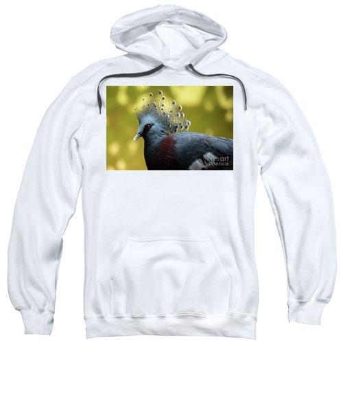 Victoria Crowned Pigeon Sweatshirt