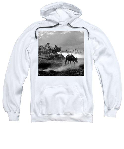 Vietnamese Water Buffalo  Sweatshirt