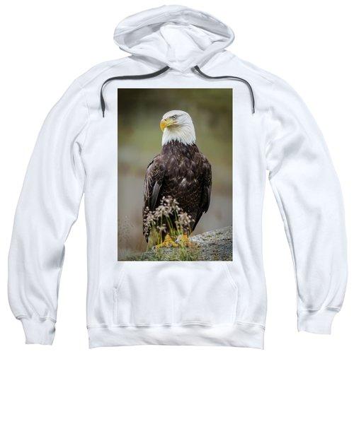 Vigilance Sweatshirt