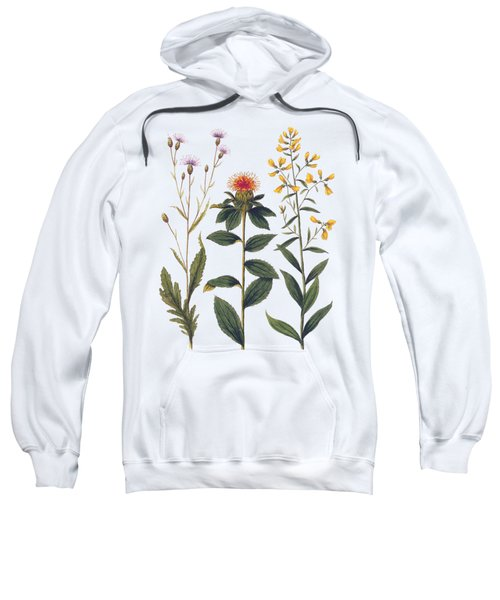 Vintage Botanical Wildflowers Sweatshirt