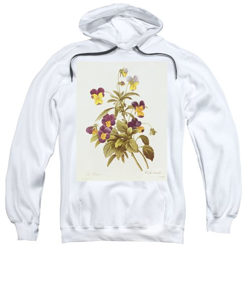 Viola Tricolour  Sweatshirt