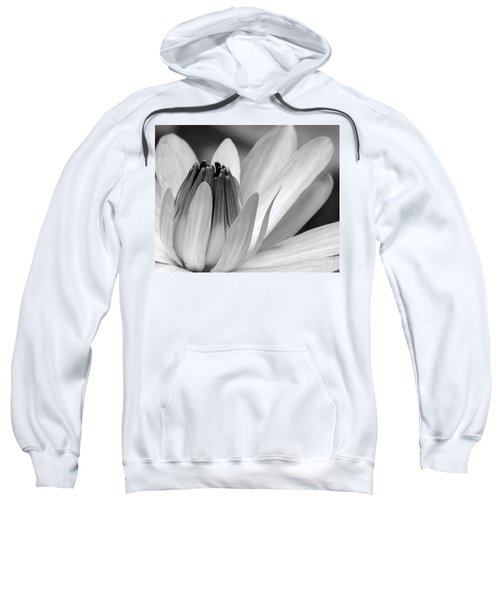 Water Lily Opening Sweatshirt