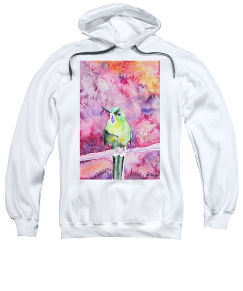 Watercolor - Violet-tailed Sylph Sweatshirt