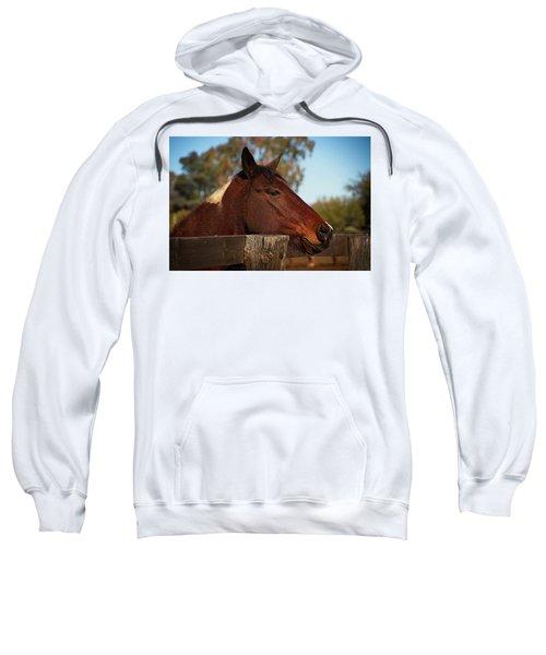 Well Hello There Sweatshirt