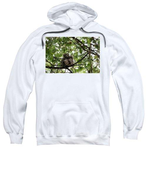 Wet Owl - Wide View Sweatshirt