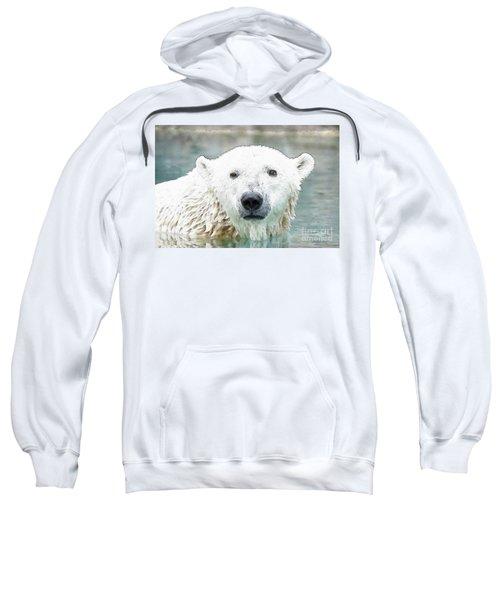 Wet Polar Bear Sweatshirt
