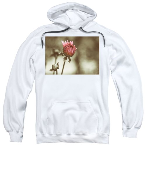 When We Were Young Sweatshirt