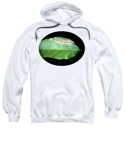 White-marked Tussock Moth Caterpillar Sweatshirt