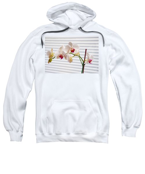 White Orchids On White Sweatshirt