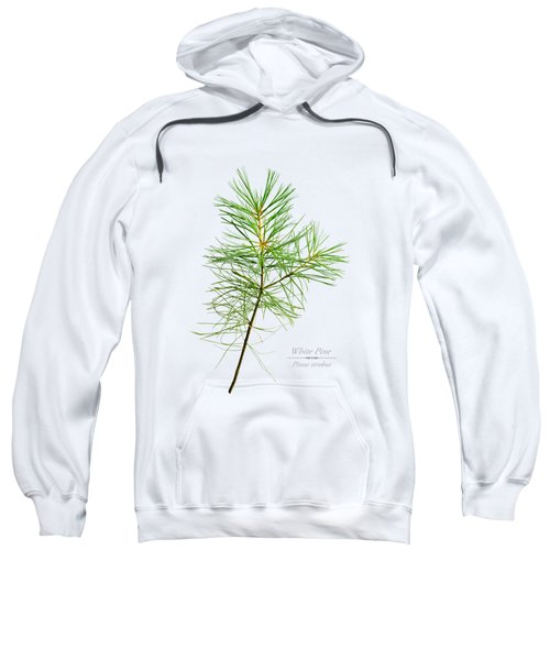 White Pine Sweatshirt