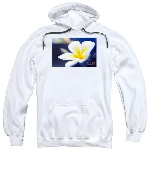 Wild Blue Morning Sweatshirt