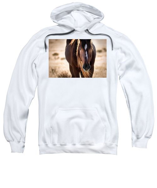 Wild Horse Watching Sweatshirt