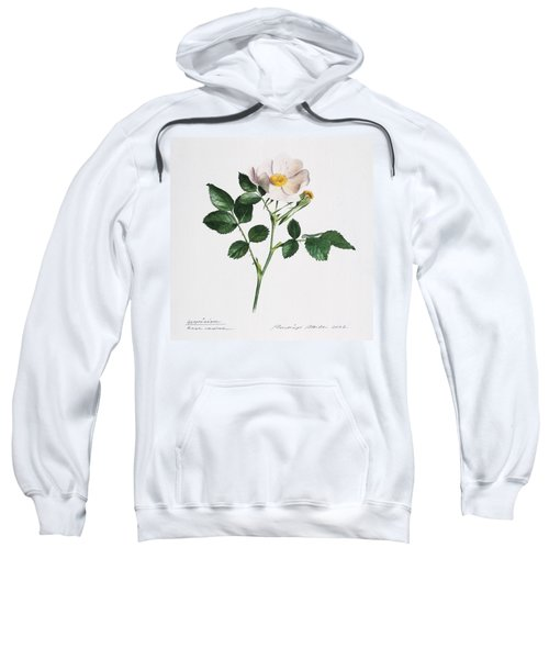 Wild Rose Sweatshirt