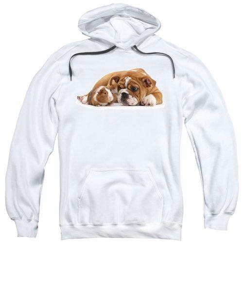Will You Be My Friend? Sweatshirt