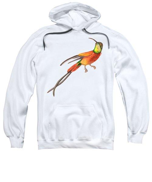 Winged Jewel 6, Watercolor Tropical Rainforest Hummingbird Red, Yellow, Orange And Green Sweatshirt