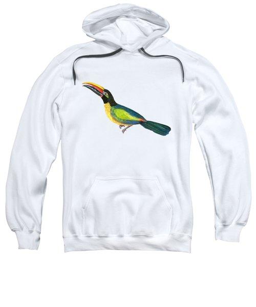 Winged Jewels 2, Watercolor Toucan Rainforest Birds Sweatshirt