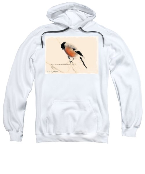 Winter Bullfinch Sweatshirt