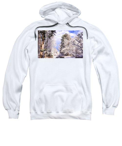 Winter Drive Sweatshirt