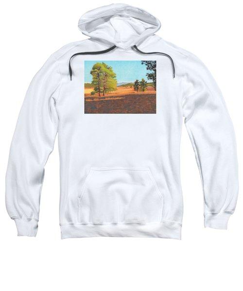 Winter Light Sweatshirt