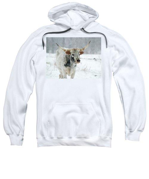 Winter Longhorn Sweatshirt