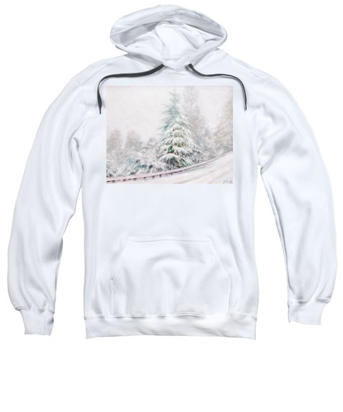 Winter Of  04 Sweatshirt