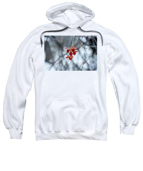 Winter Seeds Sweatshirt