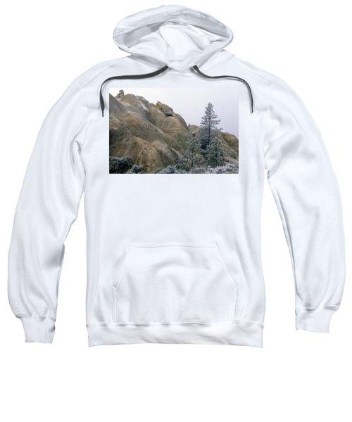 Winter Wind Sweatshirt