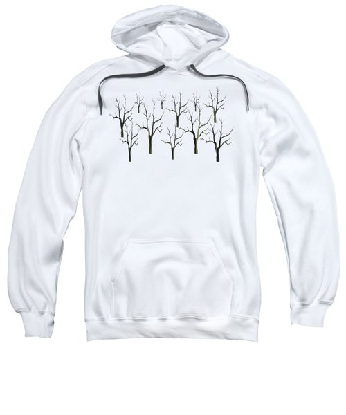 Winter Woods Sweatshirt