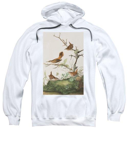 Winter Wren Or Rock Wren Sweatshirt