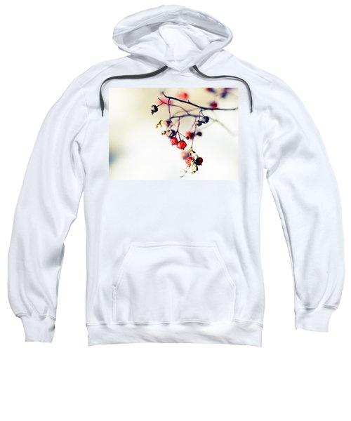 Winter's Berries Sweatshirt