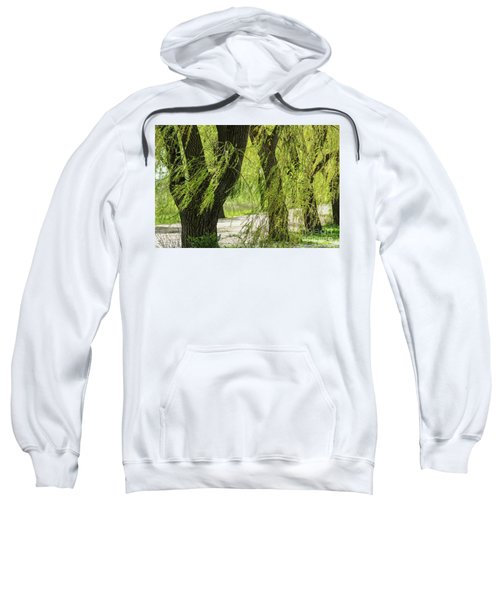Wispy Willows-2 Sweatshirt