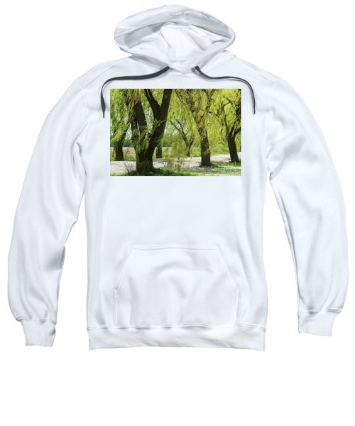 Wispy Willows-1 Sweatshirt