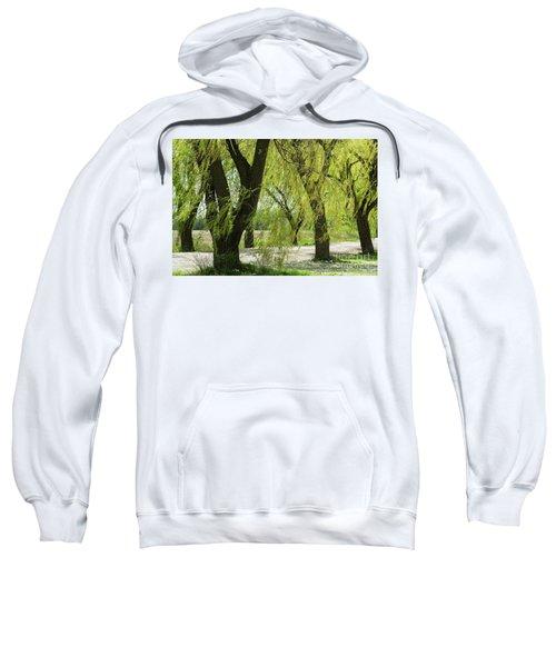 Wispy Willows-1 Sweatshirt