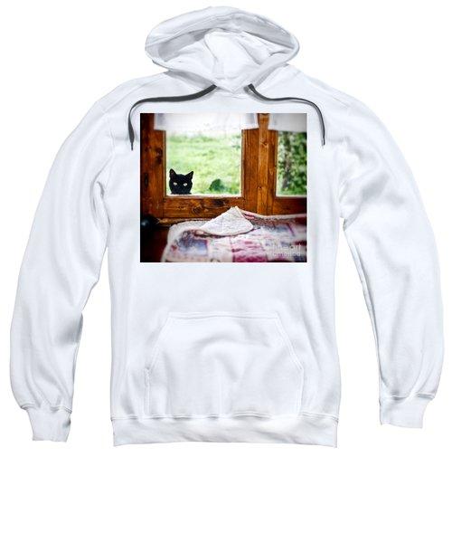 Wondering What's She... Better Investigate Sweatshirt by Silvia Ganora