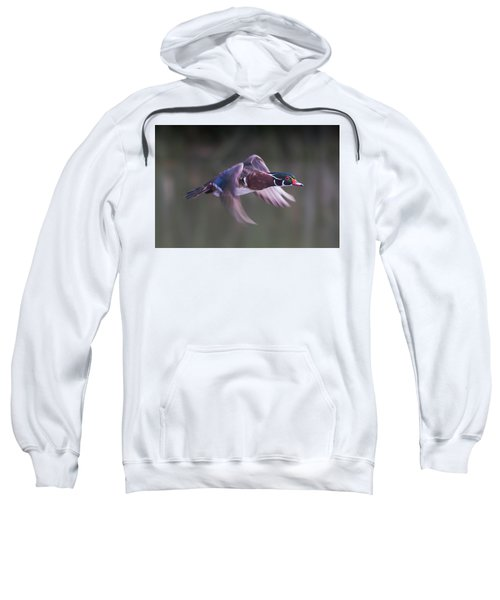 Wood Duck Flight Sweatshirt